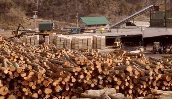Turman Lumber Hillsville Log Yard